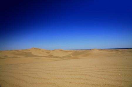 Desierto Sur de California  _ © esmya-estudio 2008
